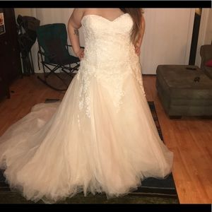 Alfred Angelo Plus size wedding gown